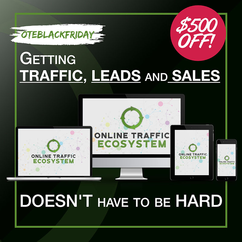 Save $500 On Rachel S. Lee's Online Traffic Ecosystem Black Friday Deal
