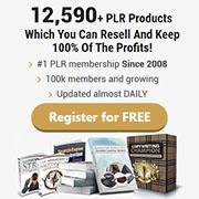 PLR Lead Magnets